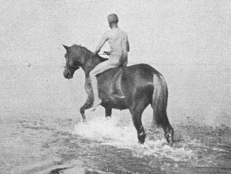 Auf reiten nackt pferd nackt reiten